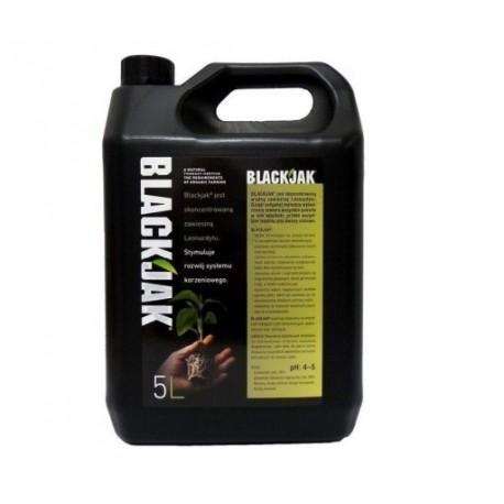 BLACKJAK 1L