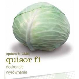 quisor f1