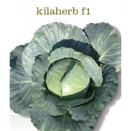 KILAHERB F1