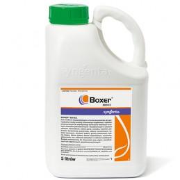 BOXER 800 EC 5L