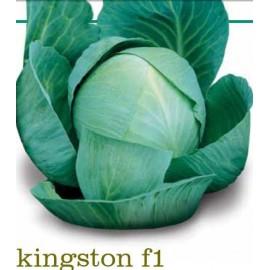 kingston f1