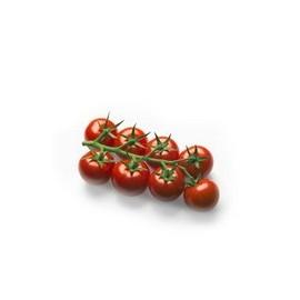 pomidor_koktajlowy