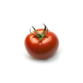 pomidor_średnioowocowy