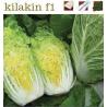 KILAKIN F1